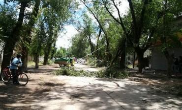 Comunicado del Municipio luego del temporal