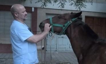 La Iglesia solicitó que la Peregrinación Gaucha no se realice con caballos